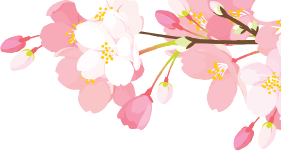 bunga-modal1